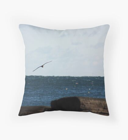 Catching The Wind Throw Pillow