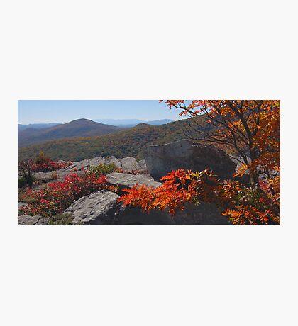 Blue Ridge Palette Photographic Print