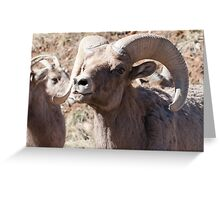 Toothy grin Greeting Card