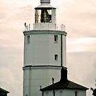 Lighthouse by Catherine Hamilton-Veal  ©