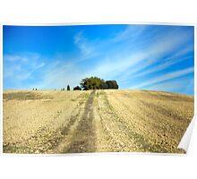 Tuscan Hillside Poster