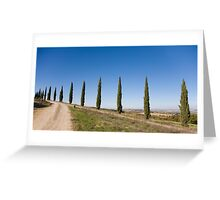 Tuscan Cyprus Trees Greeting Card
