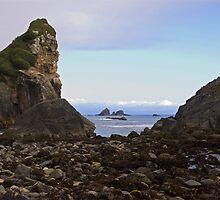 Coastal Rocks. by Andrew Ferguson