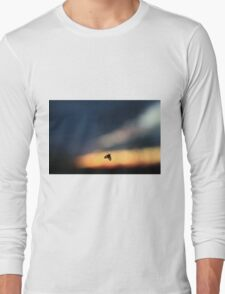 Insect on a window Long Sleeve T-Shirt