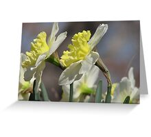 ~Spring Looking Glass~ Greeting Card