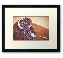 Beauty of Blueberries Framed Print