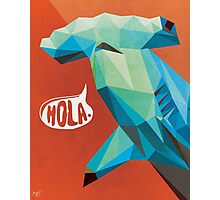 HOLA. Photographic Print