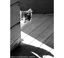 #633    Peeking Around The Corner Photographic Print