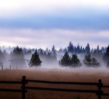 Misty Morning - Orton Series by Tamara Valjean
