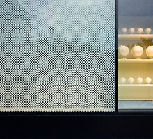 The vitrine by dominiquelandau