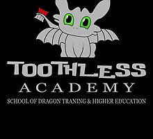 Toothless Academy by birthdaytees