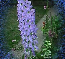 Delphinium Delight... by artyjules