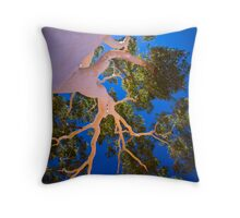 The Ghost Gum, 27 February 2008 Throw Pillow