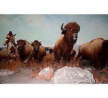 The Buffalo Hunt ... Photographic Print