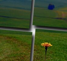 Dandelion with some scenery behind | landscape photography Sticker