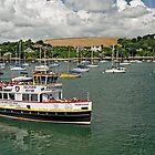 The MV Princessa, Falmouth Harbour by Rod Johnson