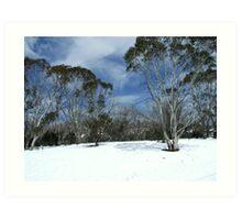 Snow Scene Art Print