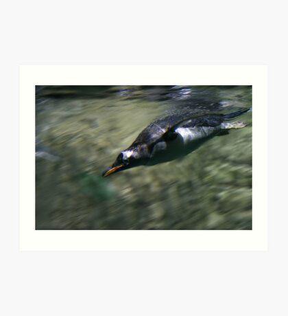 Fast Penguin Art Print
