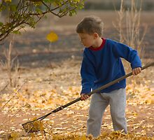 Raking Leaves by Adrianne Yzerman