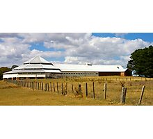Deargee Woolshed Photographic Print