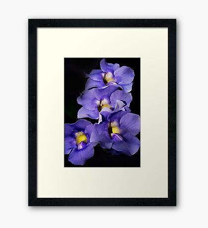 Bright Centers Framed Print
