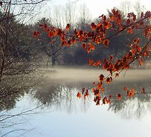 Mist of the river by Karen Cook