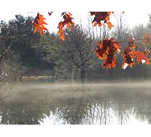 The Fringe of fall Photographic Print