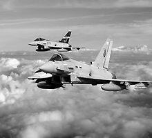 100 Years of 3 Squadron - Mono  by J Biggadike