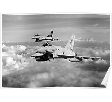 100 Years of 3 Squadron - Mono  Poster