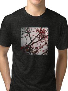 Maroussia Tri-blend T-Shirt