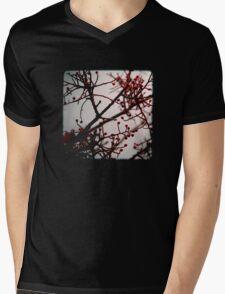 Maroussia Mens V-Neck T-Shirt
