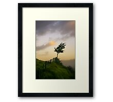 Tree on a fence Framed Print
