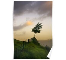 Tree on a fence Poster