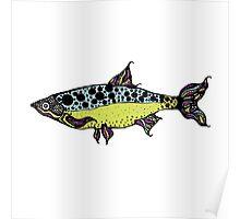fish 5 Poster