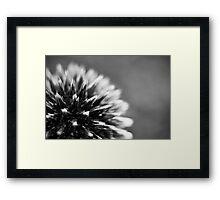 Spikeful Framed Print
