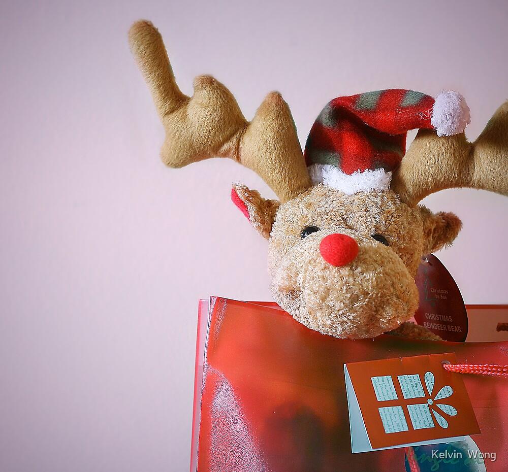Christmas Reindeer by Kelvin  Wong