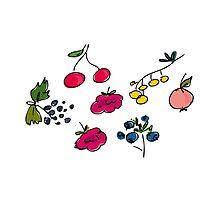 berries by Anna Philippova