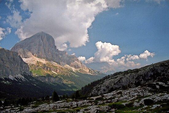 Tofana di Rozes by Lenka