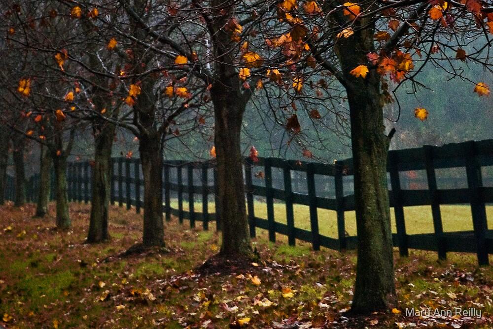 Good Neighbors by Mary Ann Reilly
