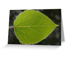Green Aspen Leaf Greeting Card