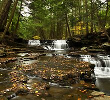Peaceful Flowing Waterfalls by Christina Rollo