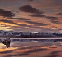 Mono Lake Panorama by David Orias