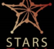 STARS FSU Sticker Sticker