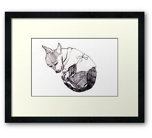 Chilly II Framed Print