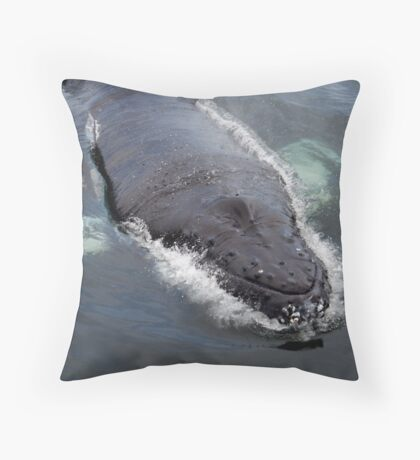 Curious Baby Humpback Throw Pillow