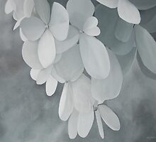 White Hydrangea Painting - Original Large Acrylic Monochromatic Black and White Wall Art by cathy savels