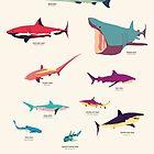 Sharks by Simon Alenius