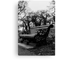 Bench with eaves dropping trees Canvas Print