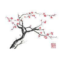 New hope sumi-e painting Photographic Print