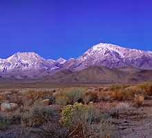 Eastern Sierras Off The Road To Bishop Creek by David Orias